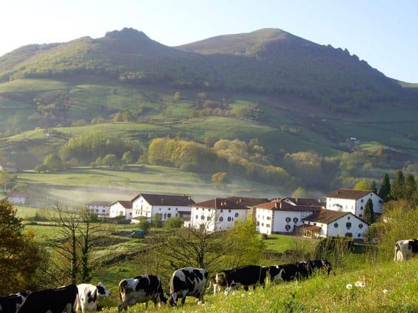 Argazkia-Jauregia