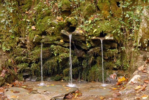 Reserva Natural de San Juan Xar