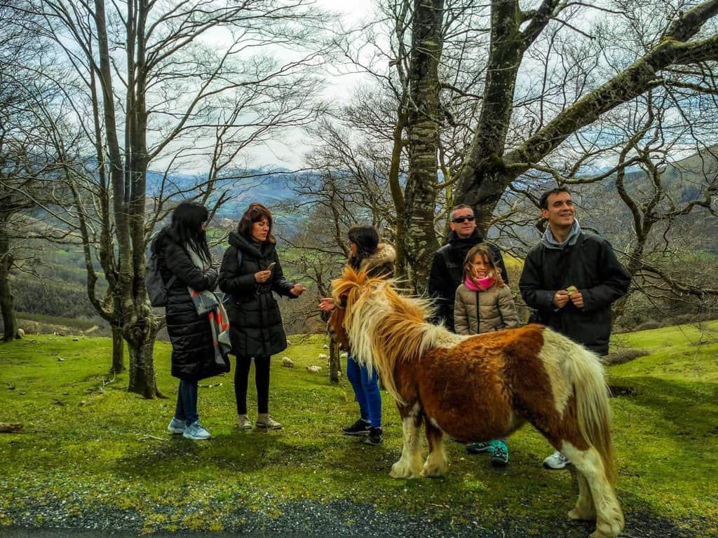Tours turísticos por Baztan, Bidasoa y país Vasco francés