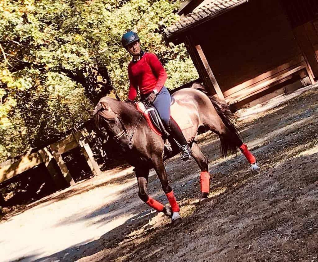 Paseo a caballo/ Ordoki Zalditegia