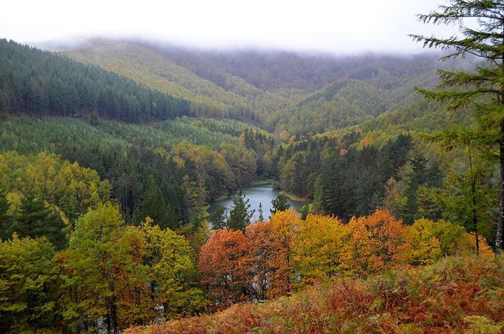Embalse de Domiko es agua y bosque