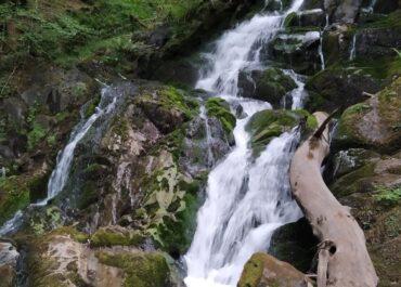 Las 10 cascadas más refrescantes de Baztan-Bidasoa