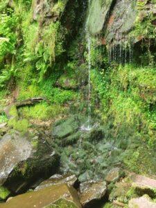 cascada de Oñaska
